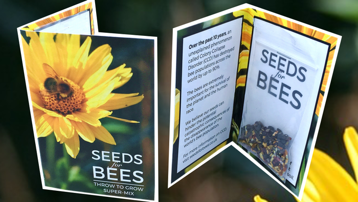 We aim to limit the potentially catastrophic consequences of the world's bee population disappearing: Throw to Grow Bee Super-Mix