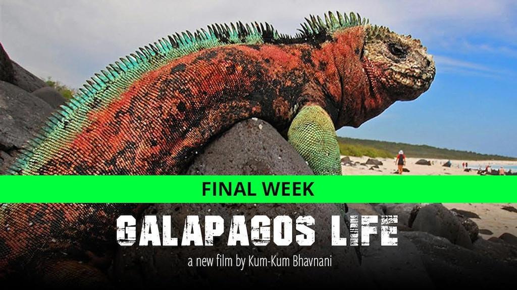 GALAPAGOS LIFE: people saving the day project video thumbnail