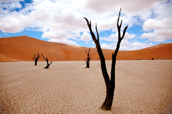 Striking Scenery At Deadvlei, Namibia (Cate Gunn)