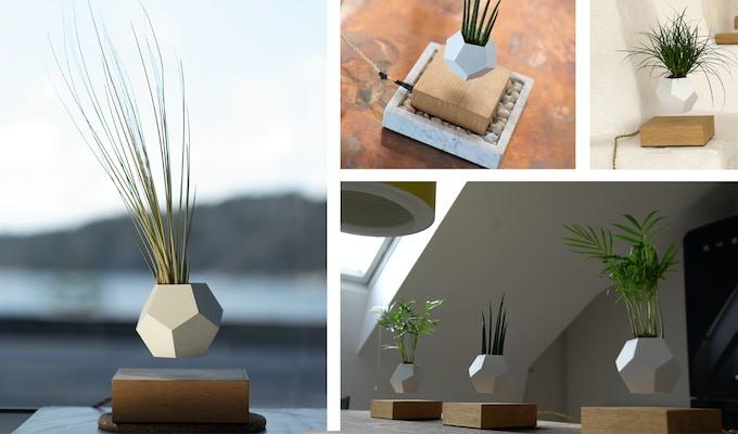 avec lyfe faites pousser vos plantes en l vitation pigsou mag. Black Bedroom Furniture Sets. Home Design Ideas