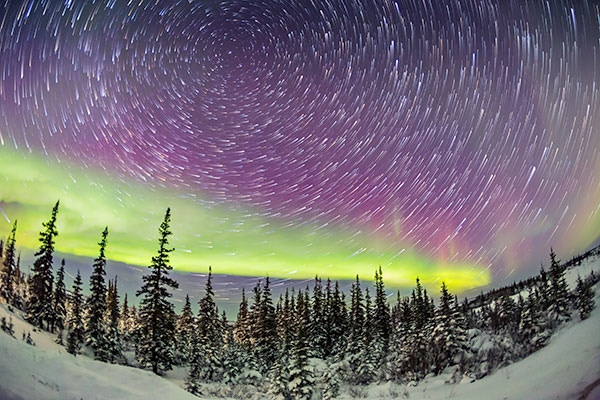 Circumpolar Stars with Aurora