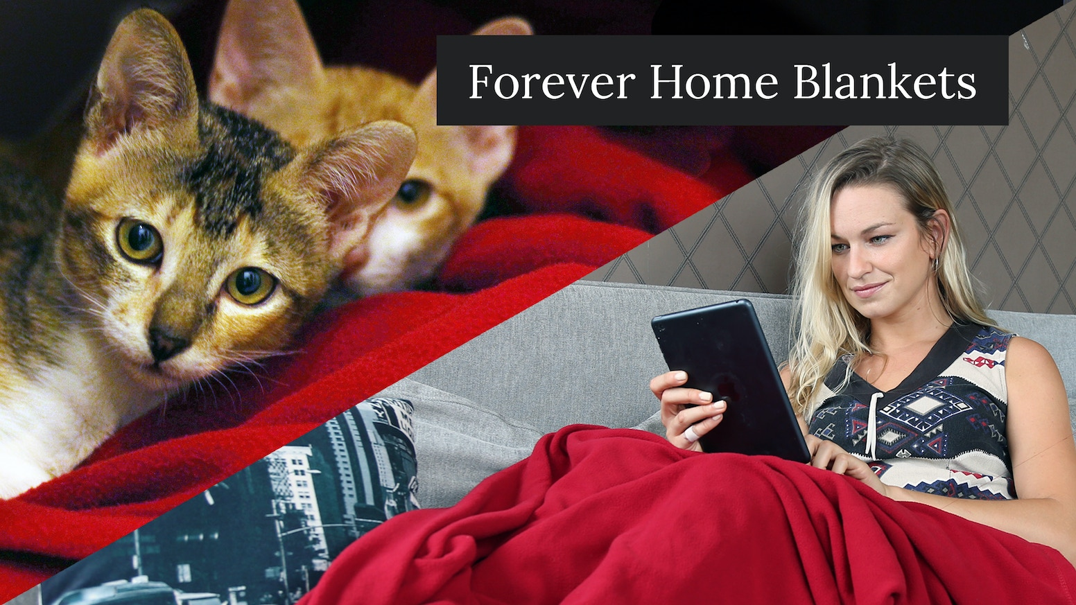 For every blanket you buy, we'll donate one to a homeless animal in need.