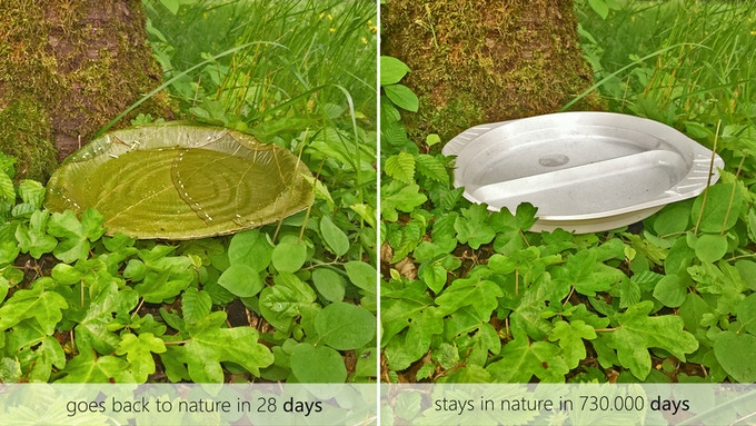 100% leaf one-way plates - flatrate offer by leaf republic — Kickstarter