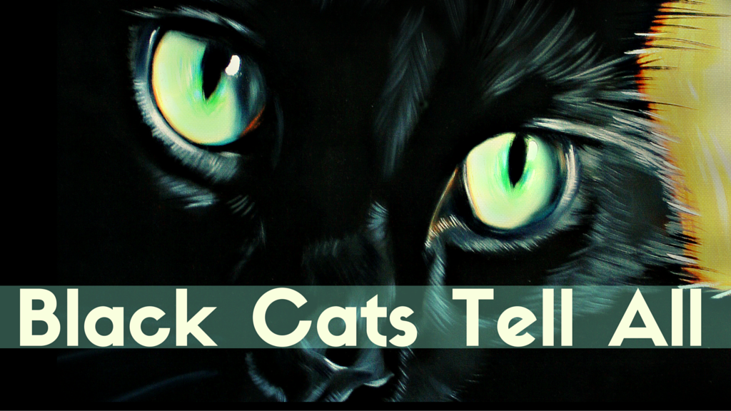 Project image for Black Cats Tell All