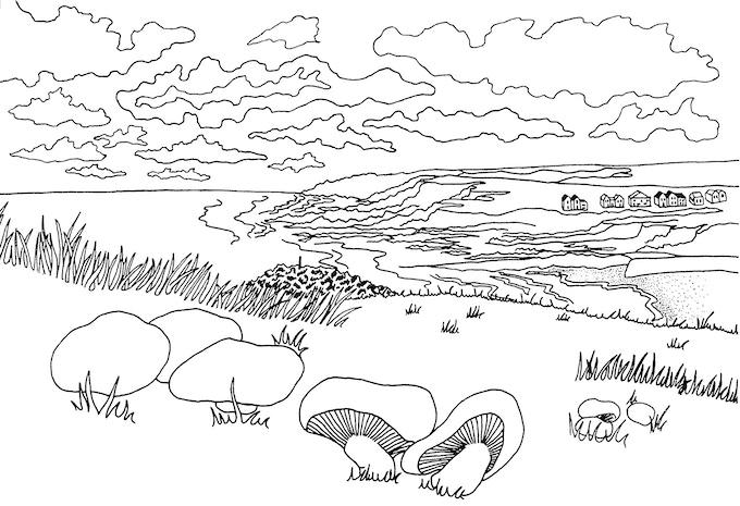 BUDE Cornwall Colouring book by Fiona Cockwill — Kickstarter