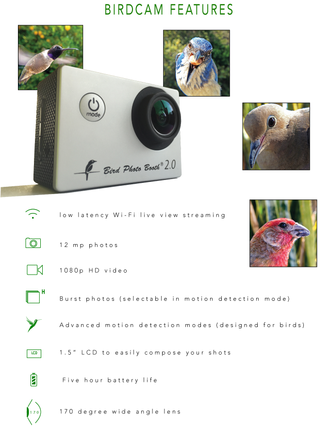 Bird Photo Booth 2 0 - See life through a new lens  by