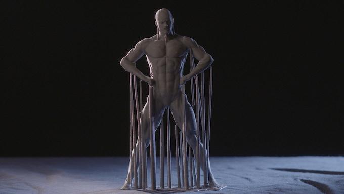 Male Bodybuilder 1 low poly by figure (x, y 63um, z 100um)