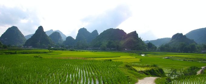 Rural Vietnam. The Inspiration for Hazang.