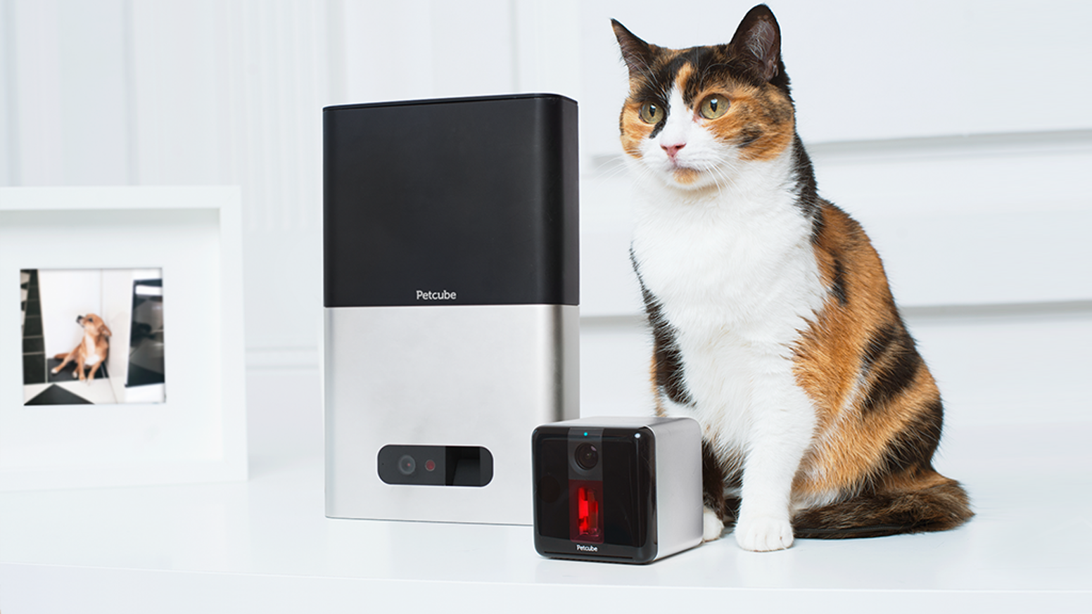 Petcube Bites + Petcube Play: Treat & Care for Pets Remotely