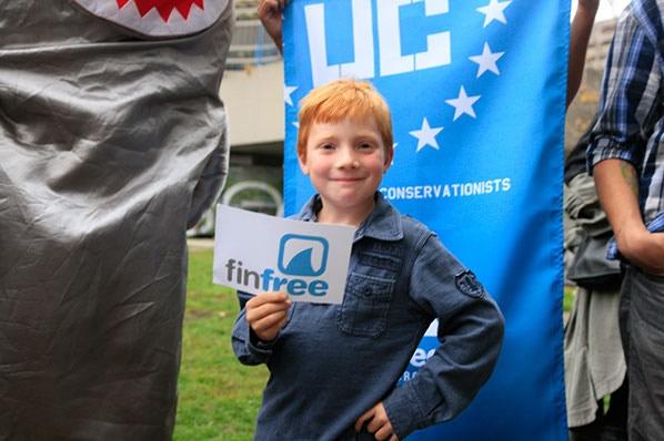 Watch 7 Yr Old Luke Ban Shark Fins