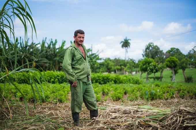 Cuban Farmer by Joe Newman.