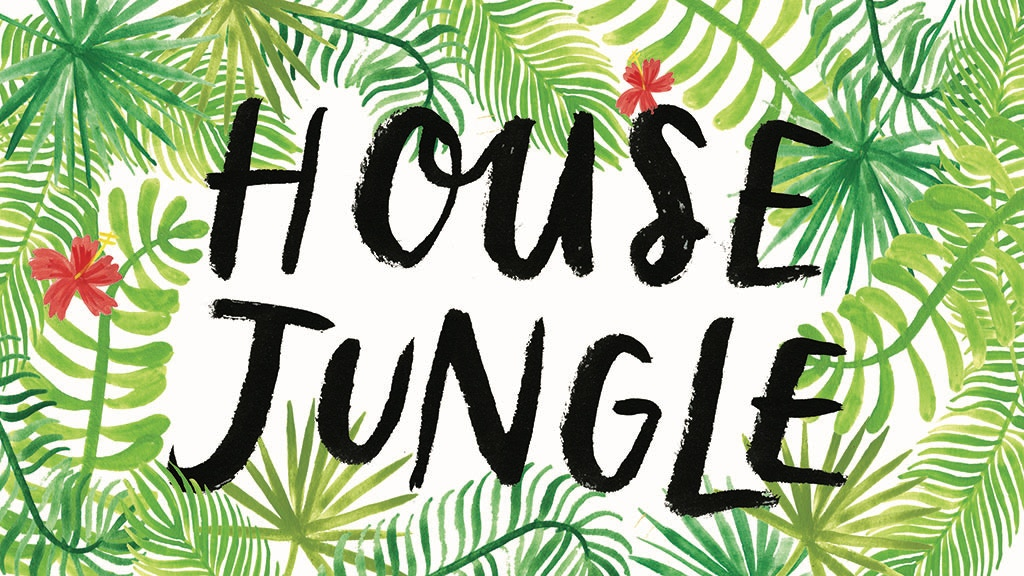 House Jungle | Illustrated Guide to Caring for Houseplants project video thumbnail