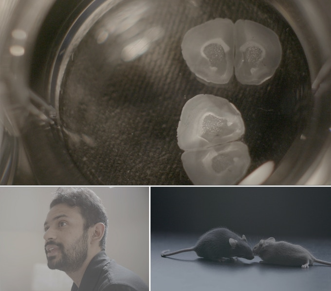 Some stills from the beautiful short film