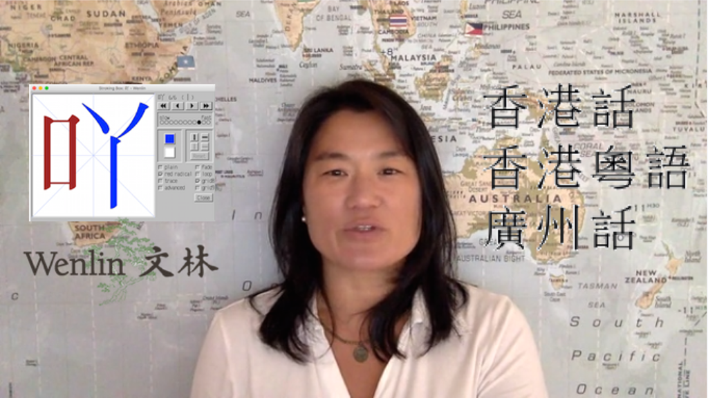 Wenlin ABC Cantonese Dictionary Website (ed. Robert Bauer) project video thumbnail