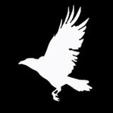 Bad Crow Games