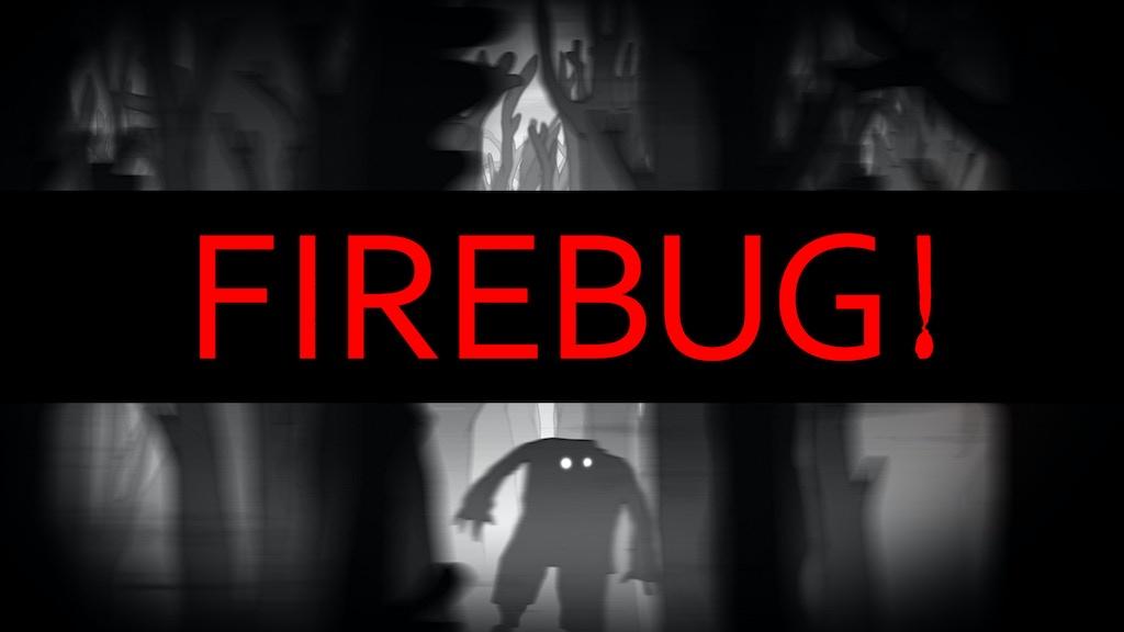 FIREBUG project video thumbnail