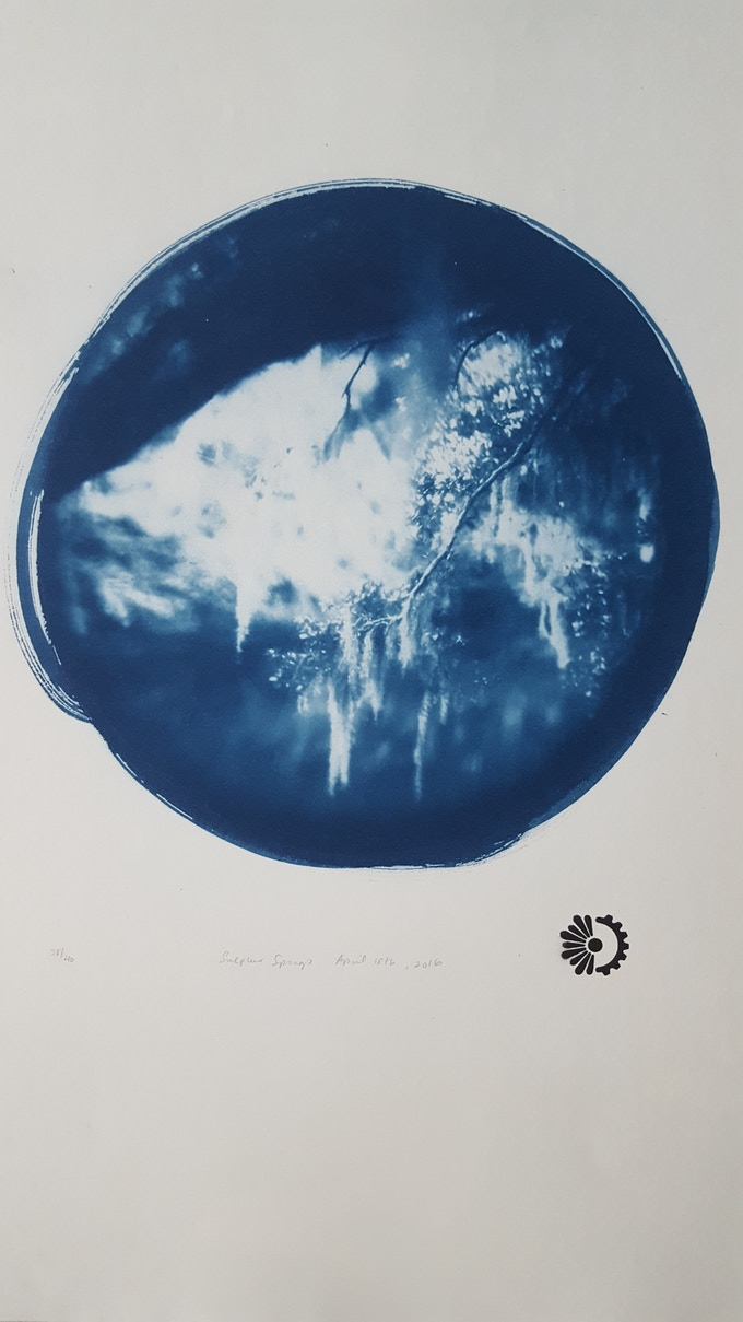 Symphonium cyanotype by LiveWork Collective