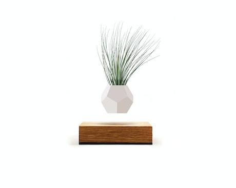 Lyfe Set Your Plants Free By Flyte Kickstarter