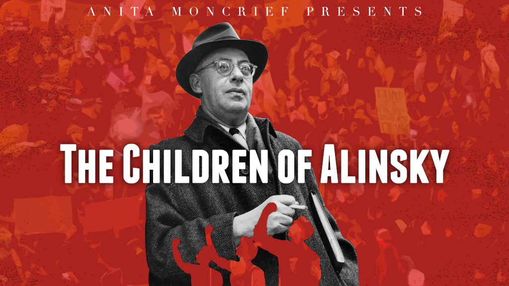 Project image for The Children of Alinsky (Phase 1)