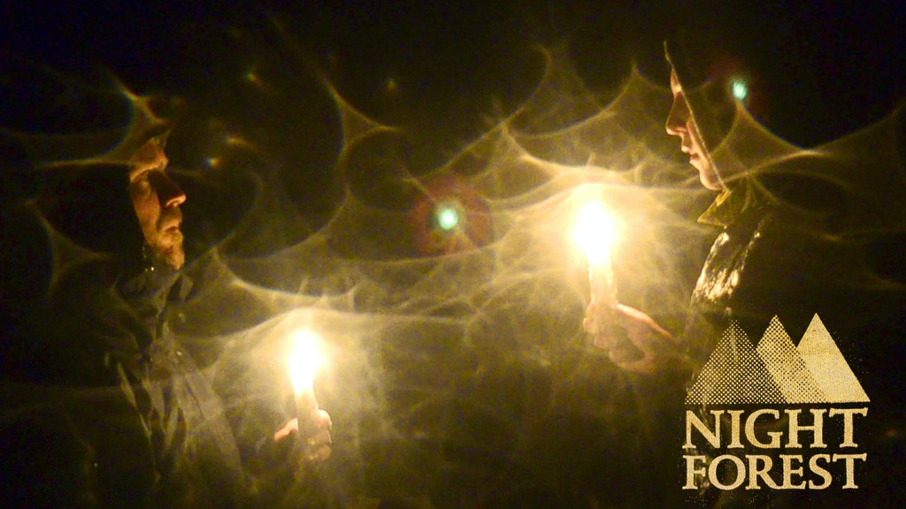 Night Forest project video thumbnail