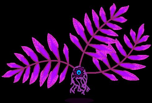 The Eyefruit Plant