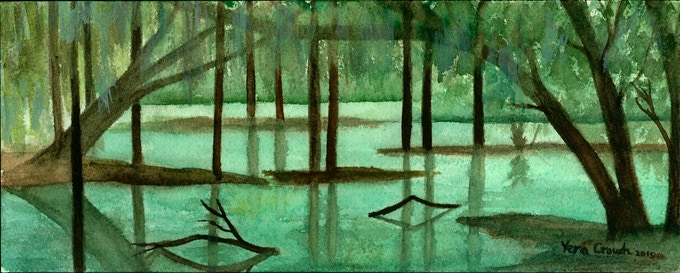 Wetlands Biome by Vera Crouch
