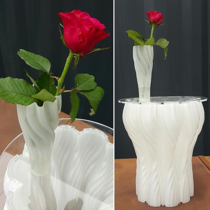 The 3D Printed Bio-Plastic Thin Vase