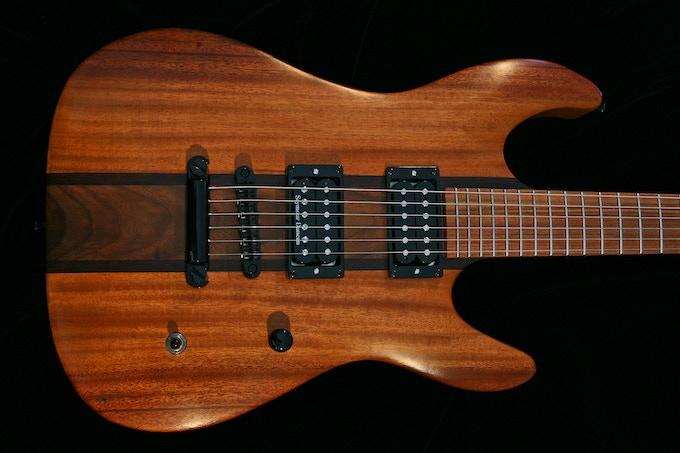 Endangered Alphabets guitar