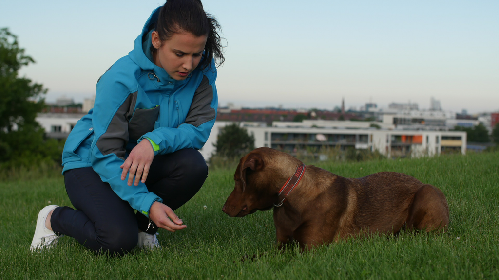 World's Coolest Jacket for Modern DOG OWNERS I BOLI MUNICH project video thumbnail