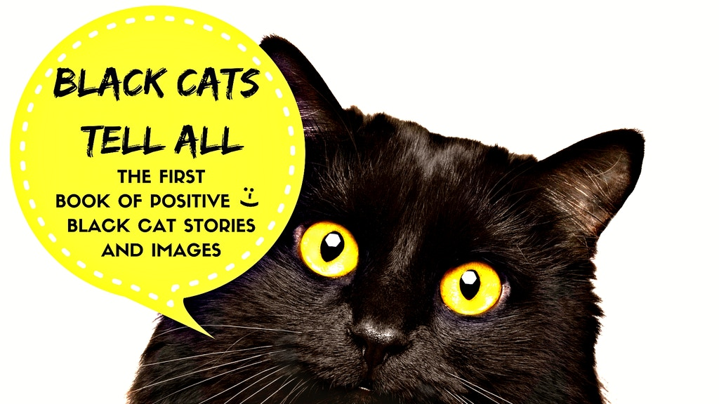 Black Cats Tell All: Amazing Black Cat Stories & Images project video thumbnail