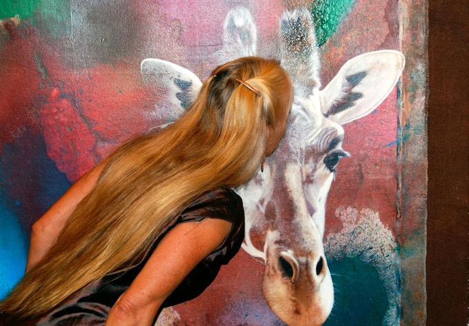 Long one of her very favorite animals, Calley found herself kissing Akeem's forehead several times a day.  Here, Calley O'Neill is shown in London at the Wildlife Exhibition.
