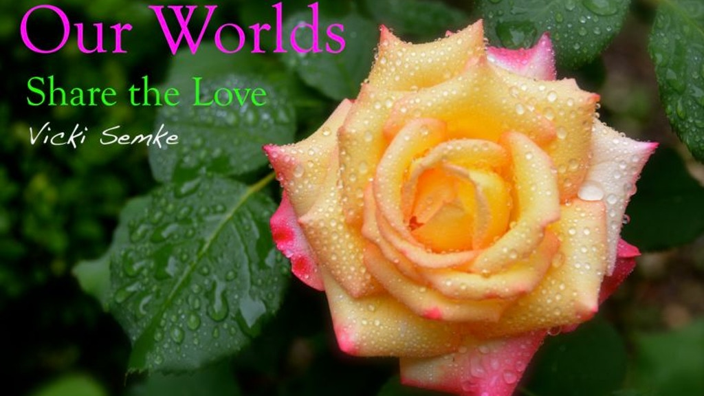 Our Worlds Share the Love Vicki Semke™ & Rose Cards Reward! project video thumbnail