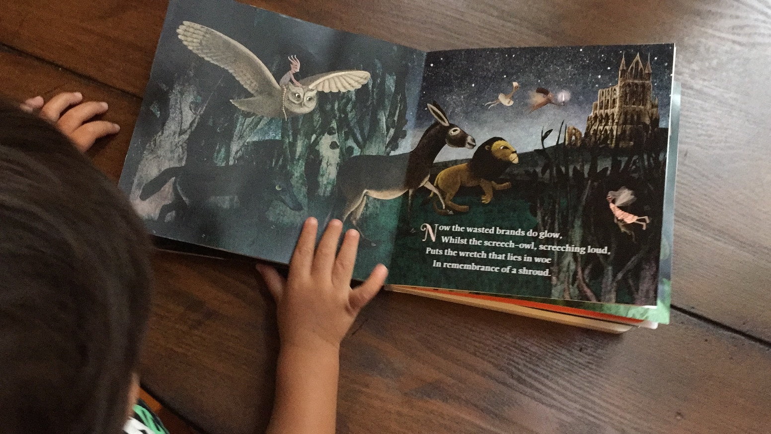 Some of Shakespeare's most beloved words illustrated to create a baby- and parent-friendly bedtime story. A board book for ages 0-3.
