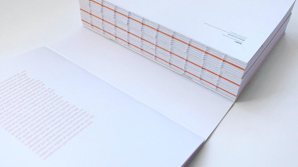 Isaac Newton's Principia Mathematica Reissue project video thumbnail