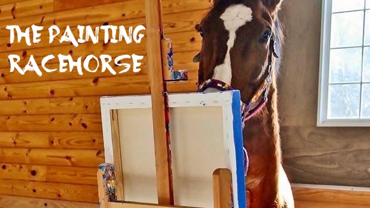 A crippled racehorse rescues himself (and his owner) with a paintbrush.