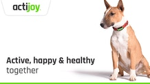 The first personal trainer and diet coach for your dog!