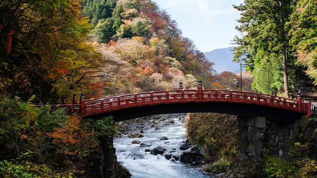 Oishii: Culinary Adventures around Japan project video thumbnail