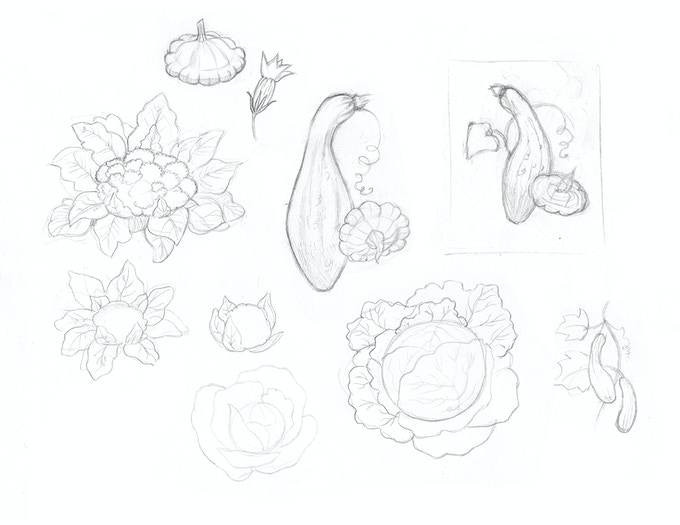 A few of many preliminary sketches
