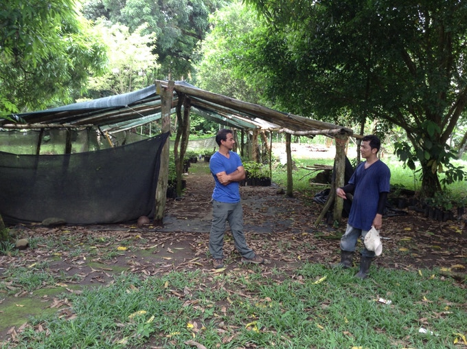 Our friend and fellow chocolatier, an expert in cacao, Ismael, speaks with farmer Edwin at his 100 year old farm