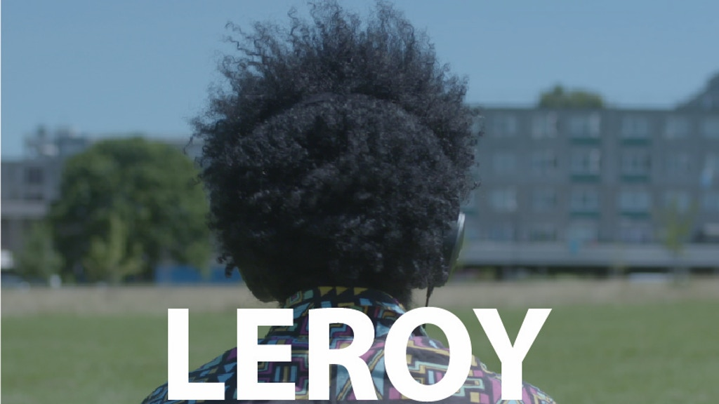 Leroy project video thumbnail