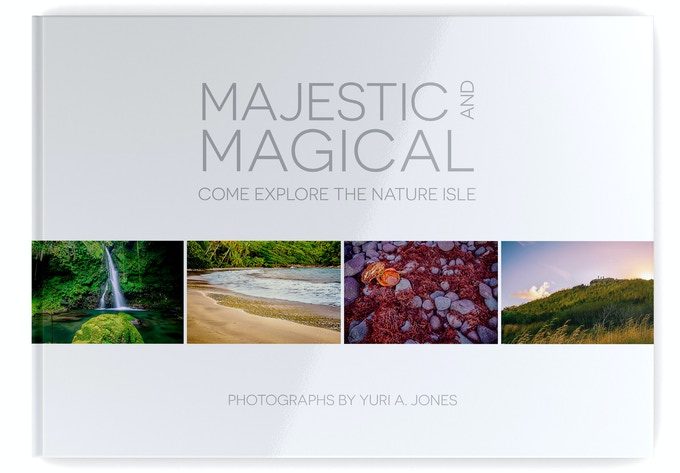 The front cover of Majestic and Magical
