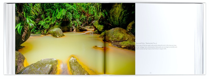 A large, double-page spread from the book
