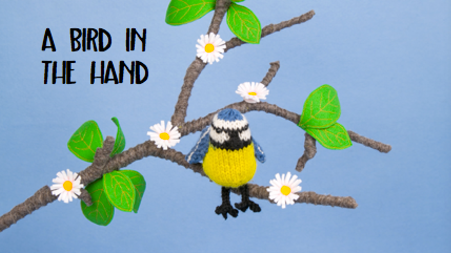 A Bird in the hand knitting pattern book by Sue Stratford — Kickstarter
