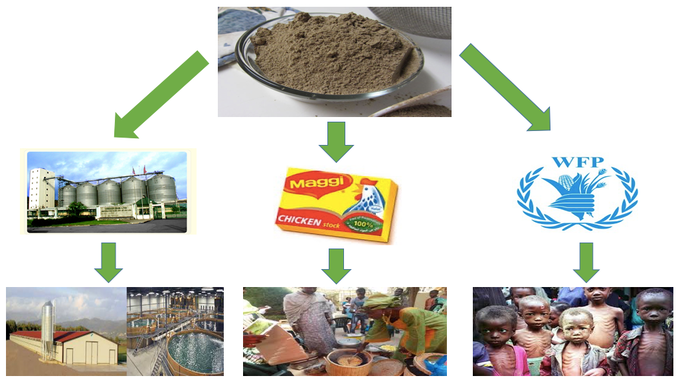 Cricket protein for food security in west africa by for Food s bar unloc