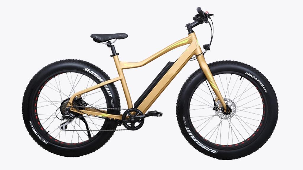 M2S Bikes All Terrain 750 Watt Electric Bike project video thumbnail
