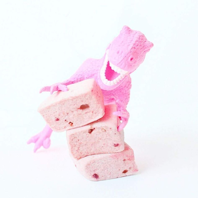 Fact: Dinosaurs love Raspberry Marshmallows