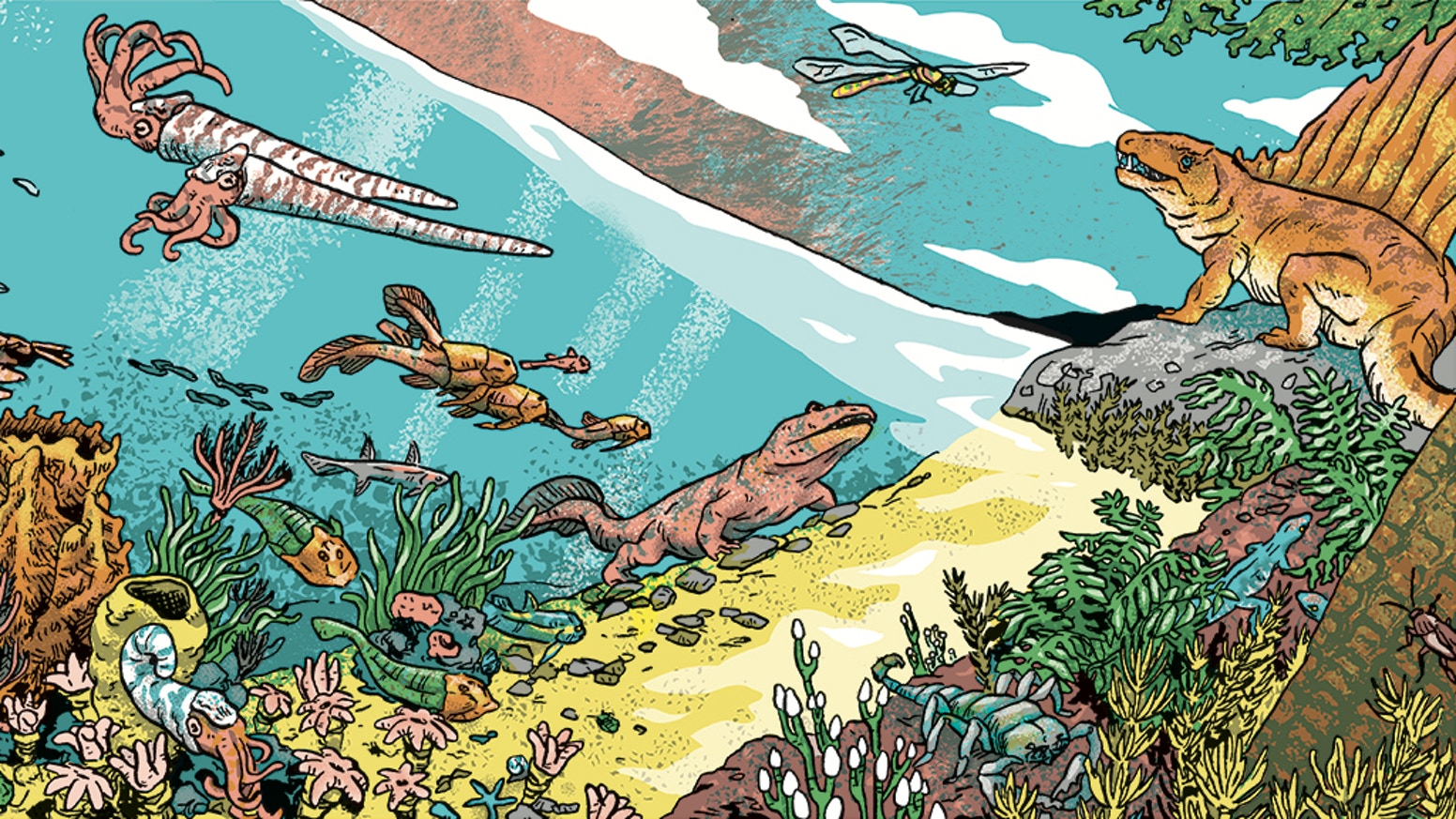 Five accordion books covering 280 million years of prehistoric life, that together, create one continuous image 45 ft long.