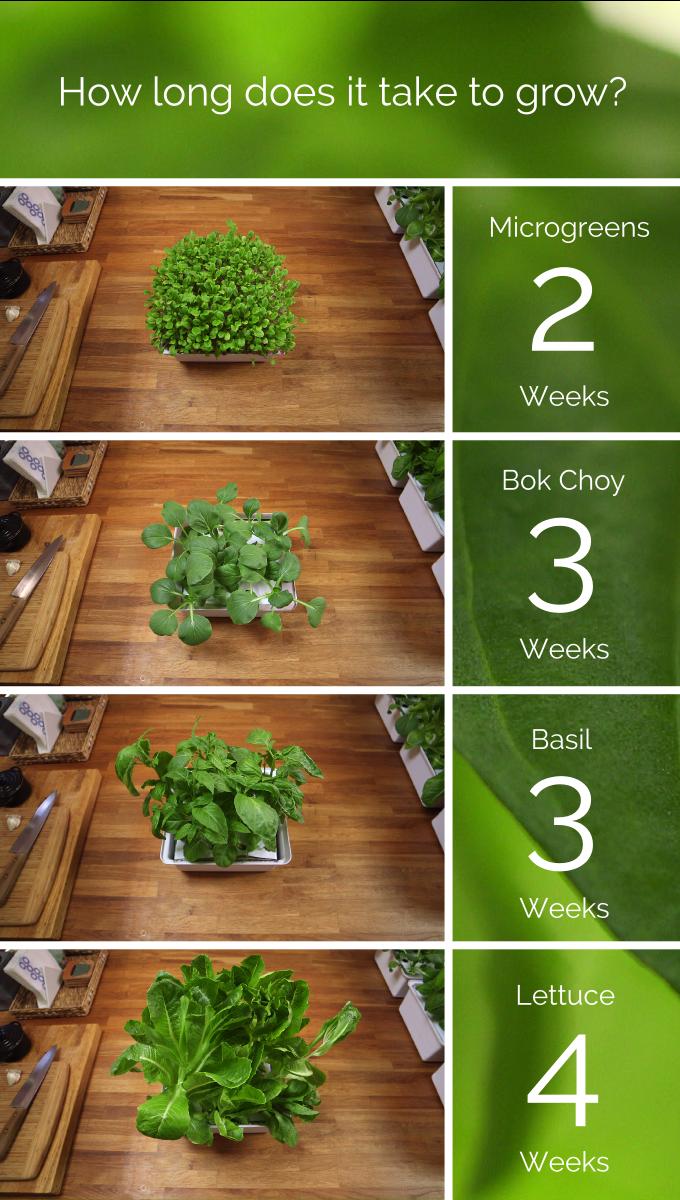 Nanofarm: The Food-Growing Appliance by Replantable — Kickstarter