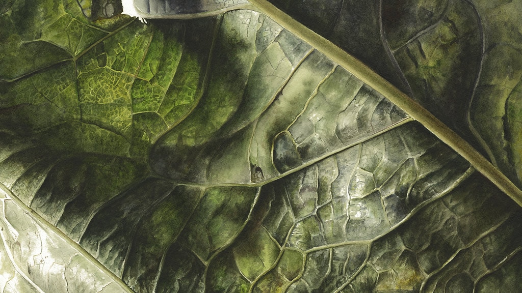 Leafscape - a limited edition art book by Inky Leaves project video thumbnail