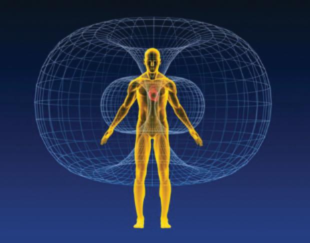 HOLOS torus geometry represents our energetic field.